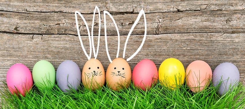 Egg Hunting